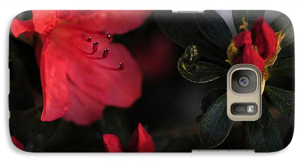 Galaxy Case featuring the photograph Standing Watch by Wanda Brandon