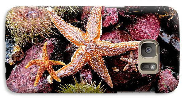 Galaxy Case featuring the photograph Starfish by Sarah Mullin