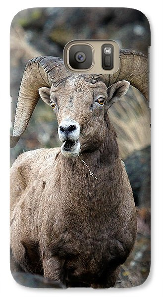 Galaxy Case featuring the photograph Startled Ram by Steve McKinzie