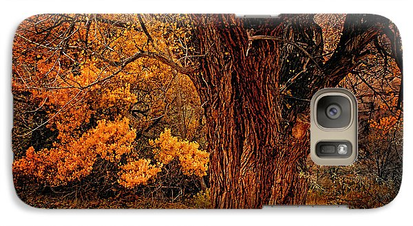 Galaxy Case featuring the photograph Stately Oak by Priscilla Burgers