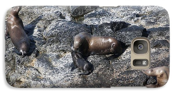 Galaxy Case featuring the photograph Steller Sea Lion - 0042 by S and S Photo