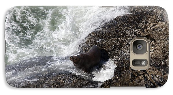 Galaxy Case featuring the photograph Steller Sea Lion - 0046 by S and S Photo