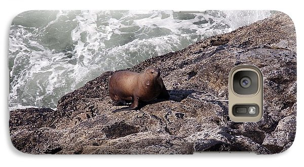 Galaxy Case featuring the photograph Steller Sea Lion - 0029 by S and S Photo