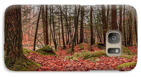 Galaxy Case featuring the photograph Stickney Brook Leaves by Jeremy Farnsworth