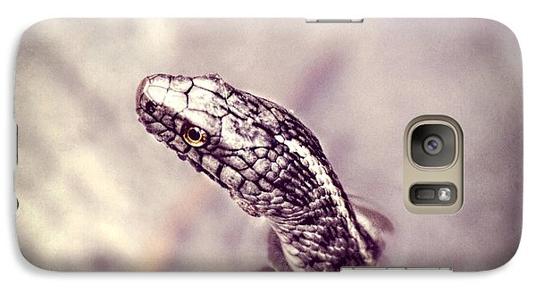 Galaxy Case featuring the photograph Stony Stare by Melanie Lankford Photography