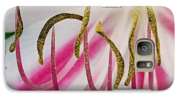 Galaxy Case featuring the photograph Striped Crinium Squared by TK Goforth