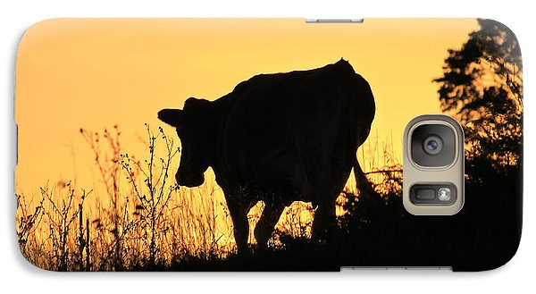 Galaxy Case featuring the photograph Strolling Into The Sunset by Penny Meyers