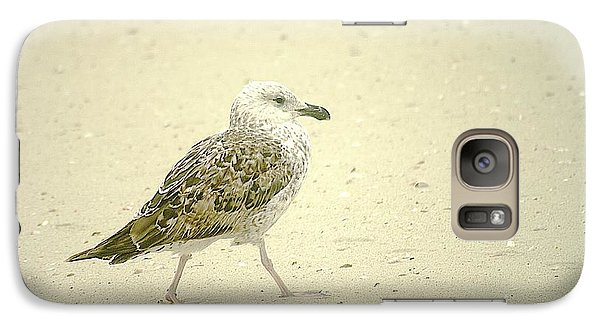 Galaxy Case featuring the photograph Strutting Young Seagull  by Suzanne Powers