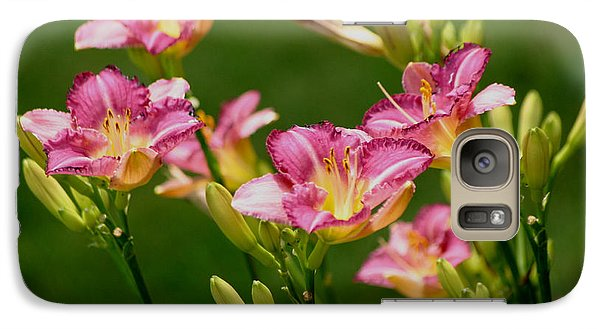 Galaxy Case featuring the photograph Stunning Day Lilies by Living Color Photography Lorraine Lynch