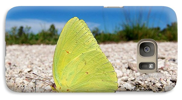 Galaxy Case featuring the photograph Sulphur Yellow Butterfly by Chris Mercer