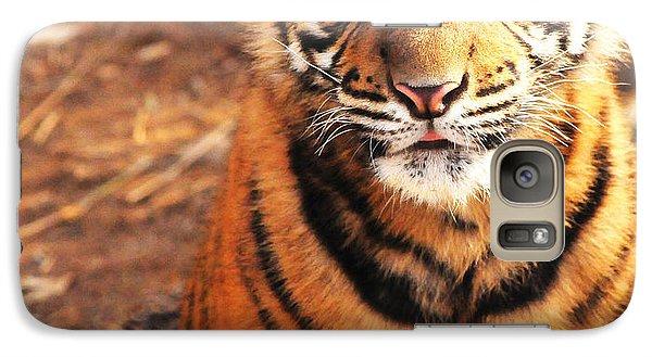 Galaxy Case featuring the photograph Sumatran Tiger Cub by Olivia Hardwicke