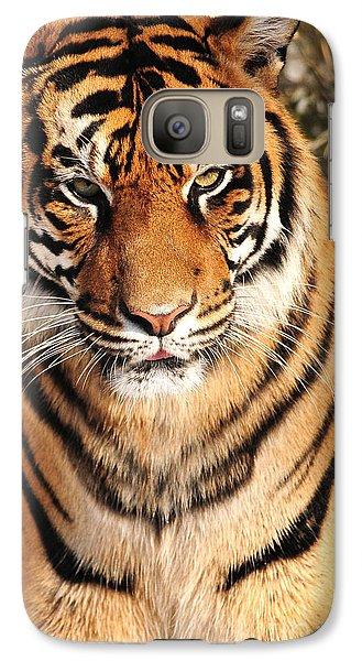 Galaxy Case featuring the photograph Sumatran Tiger by Olivia Hardwicke