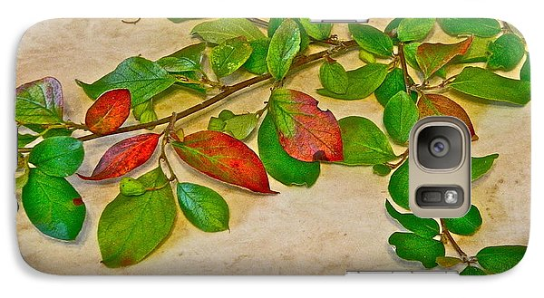 Galaxy Case featuring the photograph Summer Leaves by Johanna Bruwer
