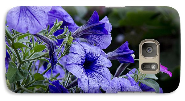 Galaxy Case featuring the photograph Summer Petunias by Wilma  Birdwell