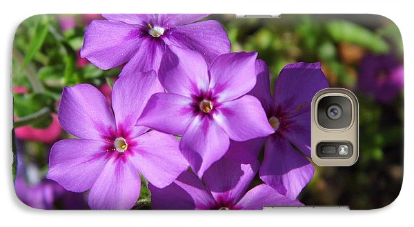 Galaxy Case featuring the photograph Summer Purple Phlox by D Hackett