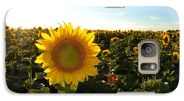 Galaxy Case featuring the photograph Sun And Sunflower 2  by Lyle Crump