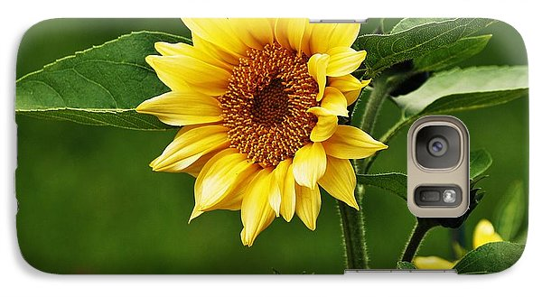 Galaxy Case featuring the photograph Sun Flower Shines by Al Fritz