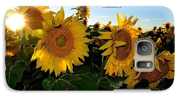 Galaxy Case featuring the photograph Sun Flowers And Pollen Wcae2  by Lyle Crump
