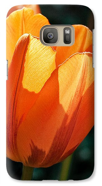 Galaxy Case featuring the photograph Sun Kissed Tulip by Barbara McMahon