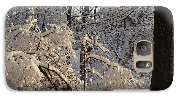 Galaxy Case featuring the photograph Sun On Snow Covered Branches by Winifred Butler