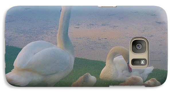 Galaxy Case featuring the photograph Sun Setting On Swan Family by Jeanette Oberholtzer