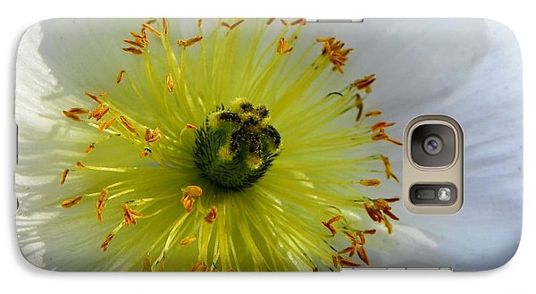 Galaxy Case featuring the photograph Sunburst by Deb Halloran