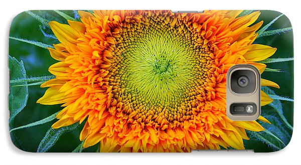 Galaxy Case featuring the photograph Sunburst by Debra Kaye McKrill
