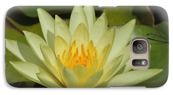 Galaxy Case featuring the photograph Sunburst by Teresa Schomig