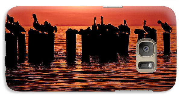 Galaxy Case featuring the photograph Sundown With Pelicans by Julis Simo