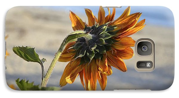 Galaxy Case featuring the photograph Sunflower by Alex King