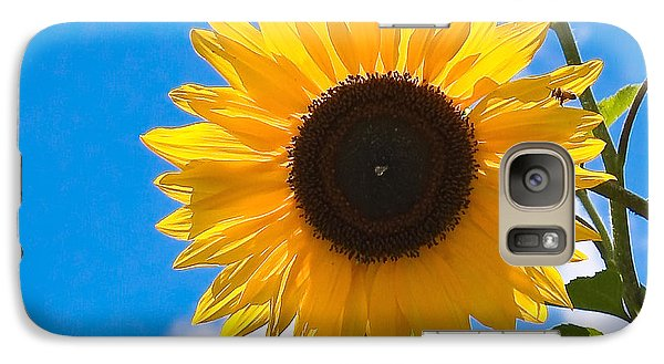 Sunflower And Bee At Work Galaxy S7 Case