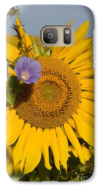 Galaxy Case featuring the photograph Sunflower And Friend by Chris Scroggins