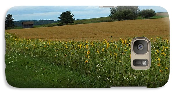 Galaxy Case featuring the photograph Sunflower Border by Gene Cyr