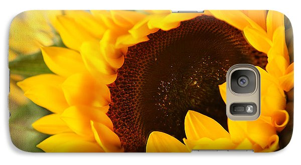 Galaxy Case featuring the photograph Sunflower by Eden Baed