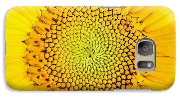 Sunflower Galaxy S7 Case - Sunflower  by Edward Fielding