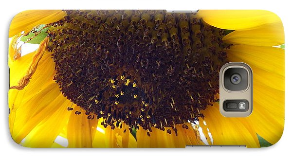 Galaxy Case featuring the photograph Sunflower - Falling For You by Janine Riley