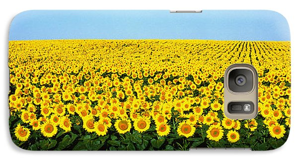 Sunflower Galaxy S7 Case - Sunflower Field, North Dakota, Usa by Panoramic Images