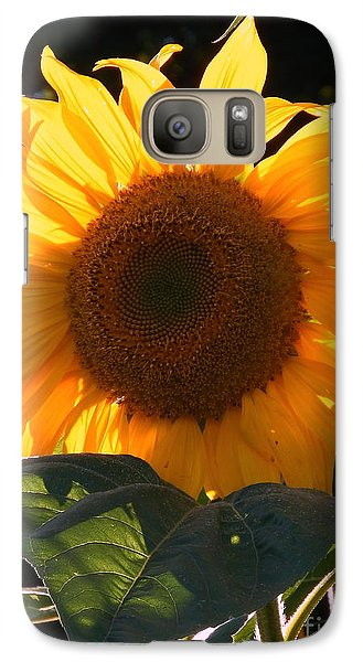 Galaxy Case featuring the photograph Sunflower - Golden Glory by Janine Riley