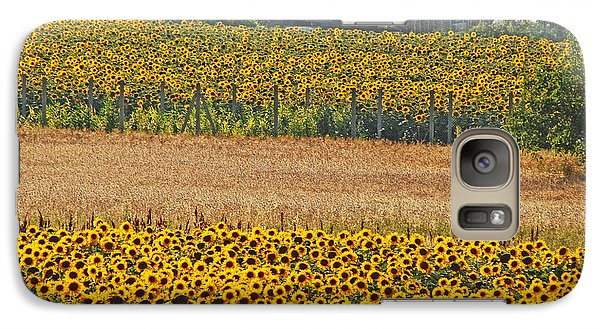 Galaxy Case featuring the photograph Sunflower Heaven by Ankya Klay