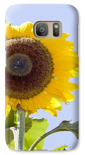 Galaxy Case featuring the photograph Sunflower In The Blue Sky by David Millenheft