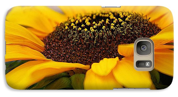 Galaxy Case featuring the photograph Sunflower Portrait Two by John S