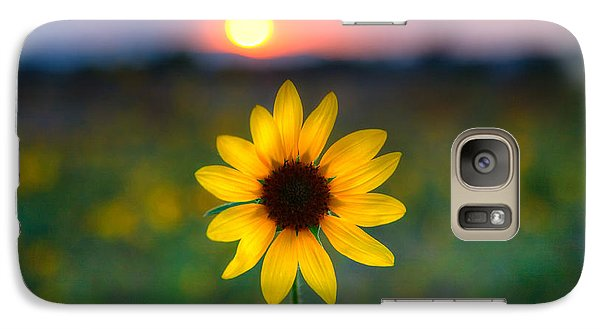 Sunflower Galaxy S7 Case - Sunflower Sunset by Peter Tellone