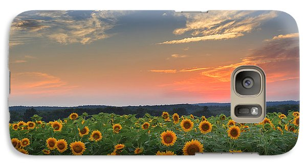 Sunflowers In The Evening Galaxy S7 Case