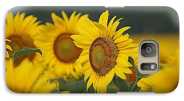 Galaxy Case featuring the photograph Sunflowers by Kathy Churchman