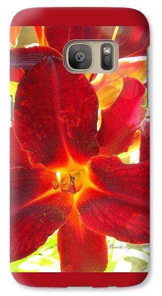 Galaxy Case featuring the photograph Sunlight And Daylilies A Match Made In Heaven by Brooks Garten Hauschild