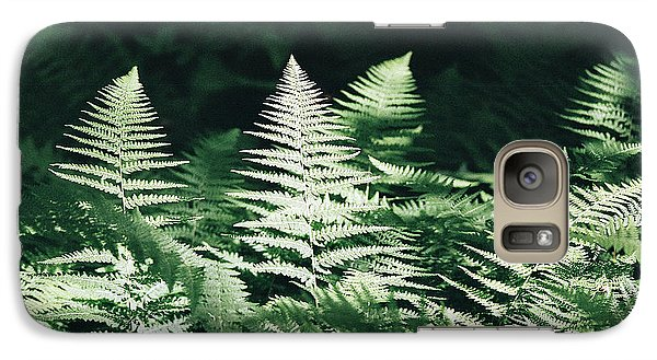 Galaxy Case featuring the photograph Sunlight And Shadows-algonquin Ferns by David Porteus