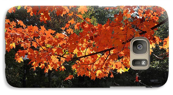 Galaxy Case featuring the photograph Sunlight On Red Maple Leaves by Diane Lent
