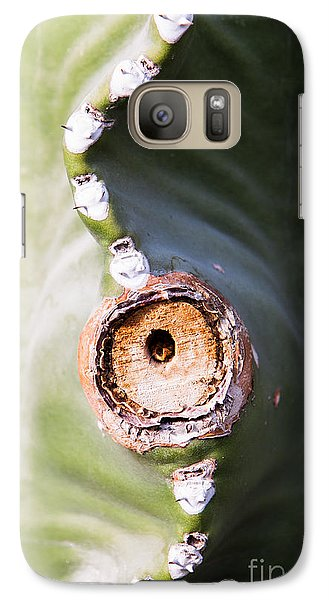 Galaxy Case featuring the photograph Sunlight Split On Cactus Knot by John Wadleigh