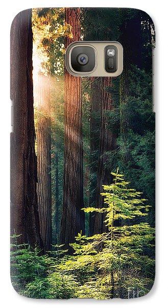 Sunlit From Heaven Galaxy S7 Case by Jane Rix