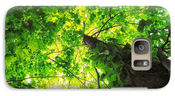 Galaxy Case featuring the photograph Sunlit Leaves by Lars Lentz
